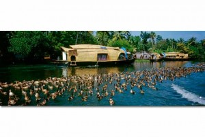 Tourist Attraction in Kumarakom Kerala India