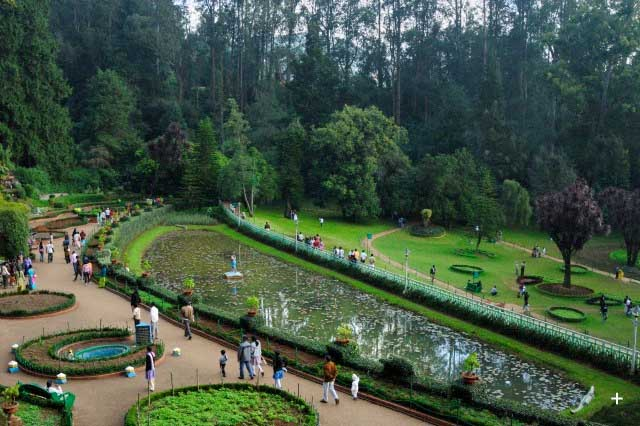 Travel To Ooty