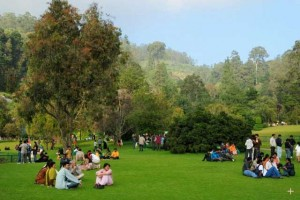 Ooty Kodikanal Tour Packages request Free Quot Enjoy  Tourist Attractions in India Travel To INDIA