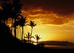 Hawaii Holiday Package