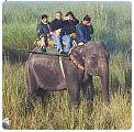 goa wildlife tour package