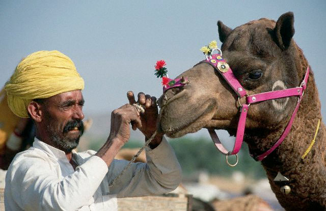 pushkar Rajasthan Tour Package India